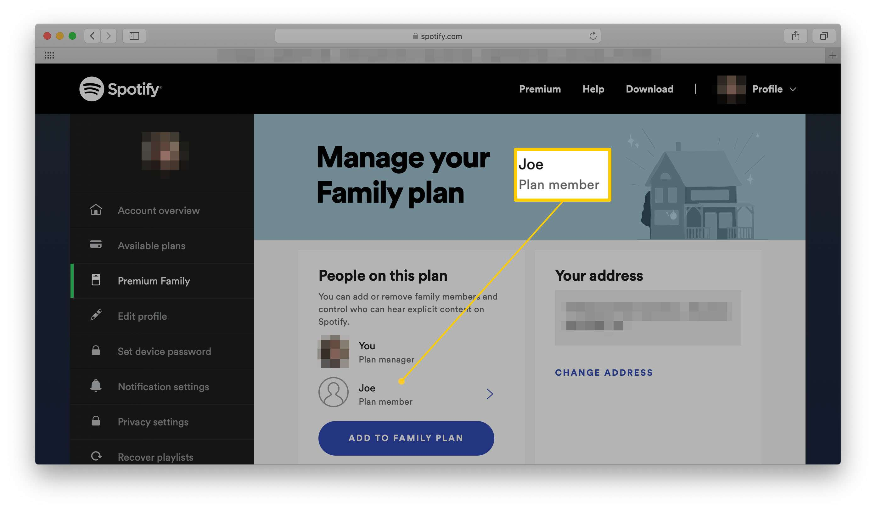 Spotify account details with a plan member name highlighted