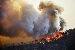 Out of control fire on Narrow Neck Plateau, Katoomba, Blue Mountains, Australia