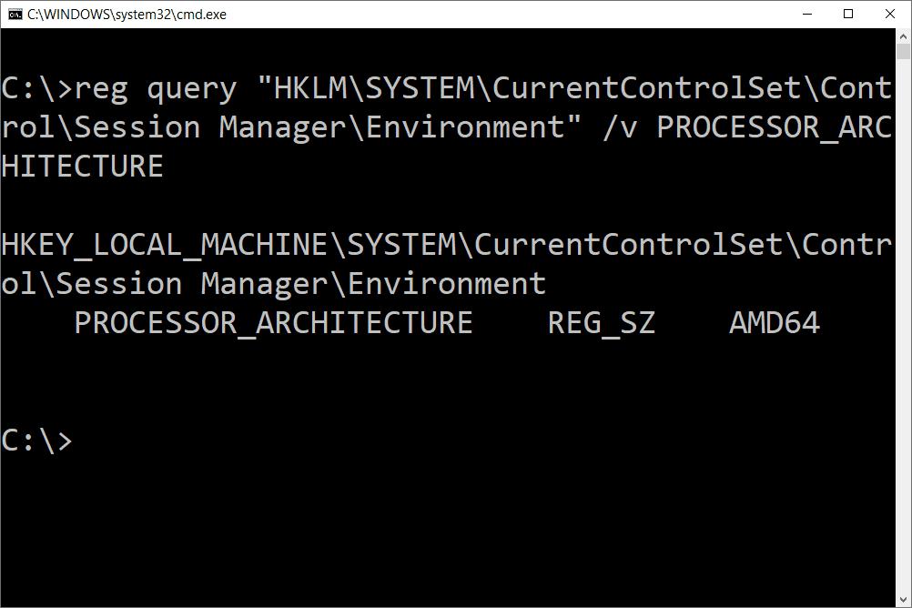 reg query processor architecture command results
