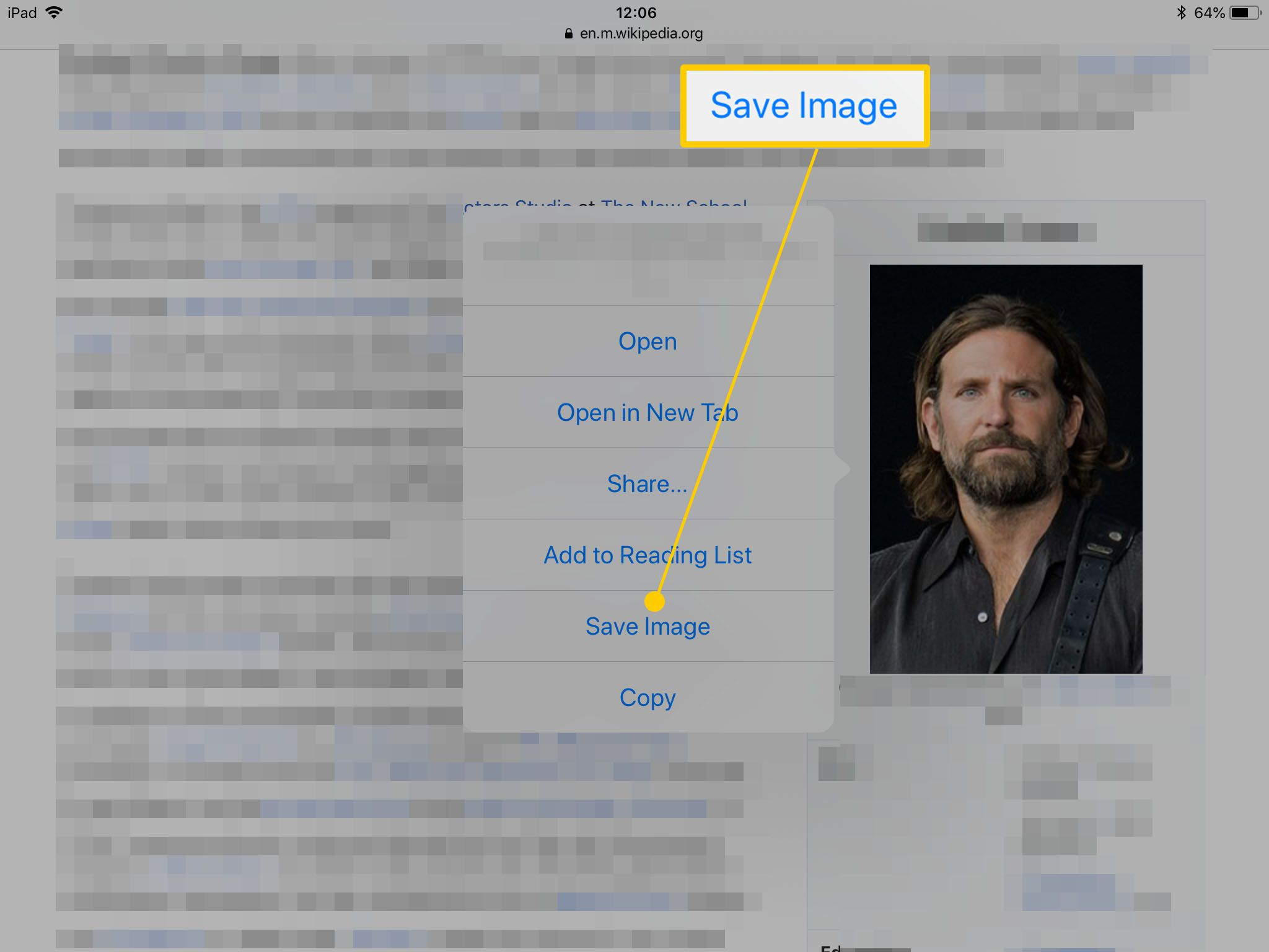An image within Safari on the iPad, with Save Image highlighted.