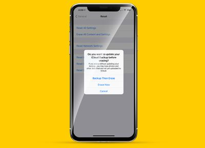 iPhone X with warning dialog box from Erase All Settings Reset option