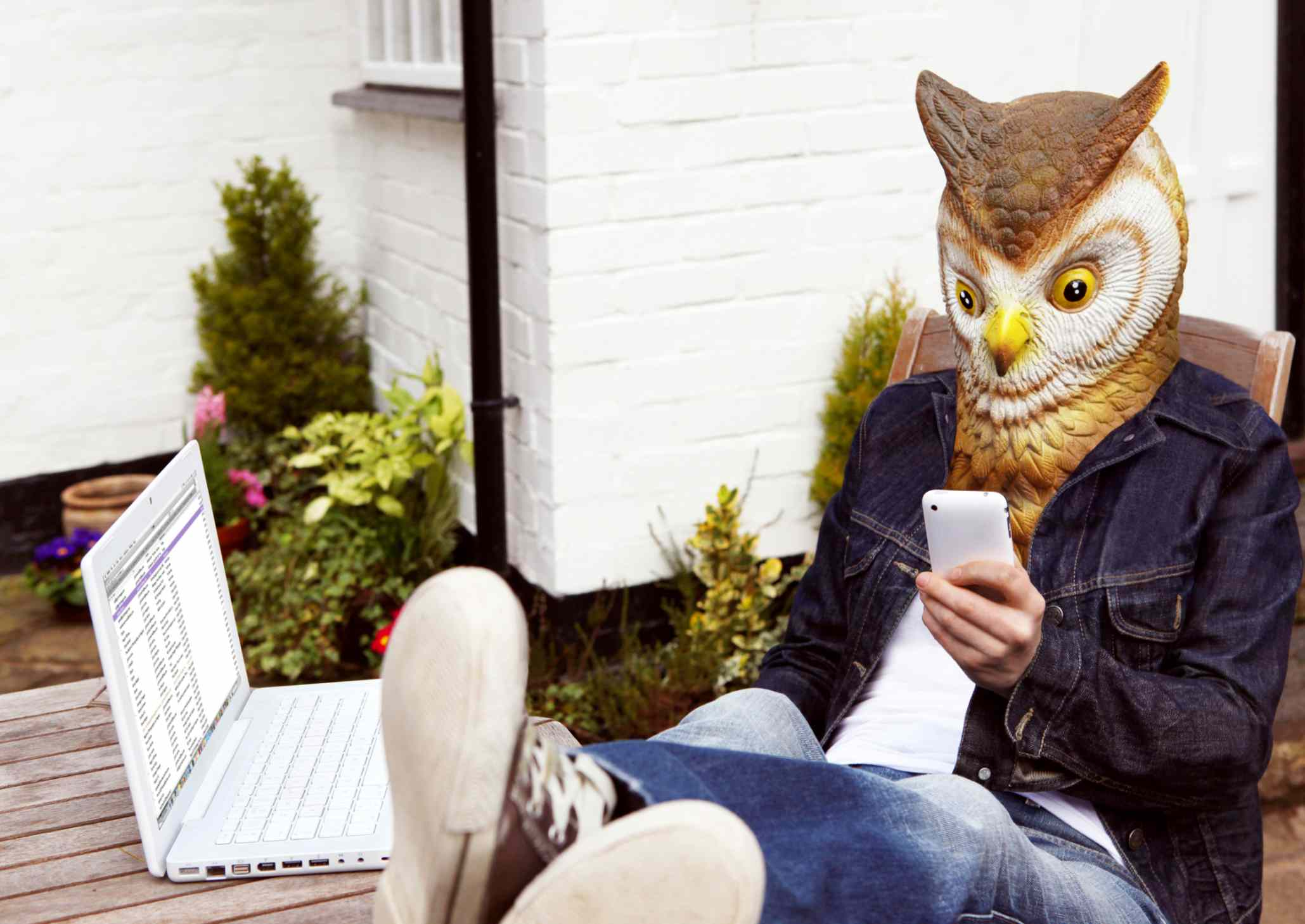 Person in Owl Mask Using Smartphone
