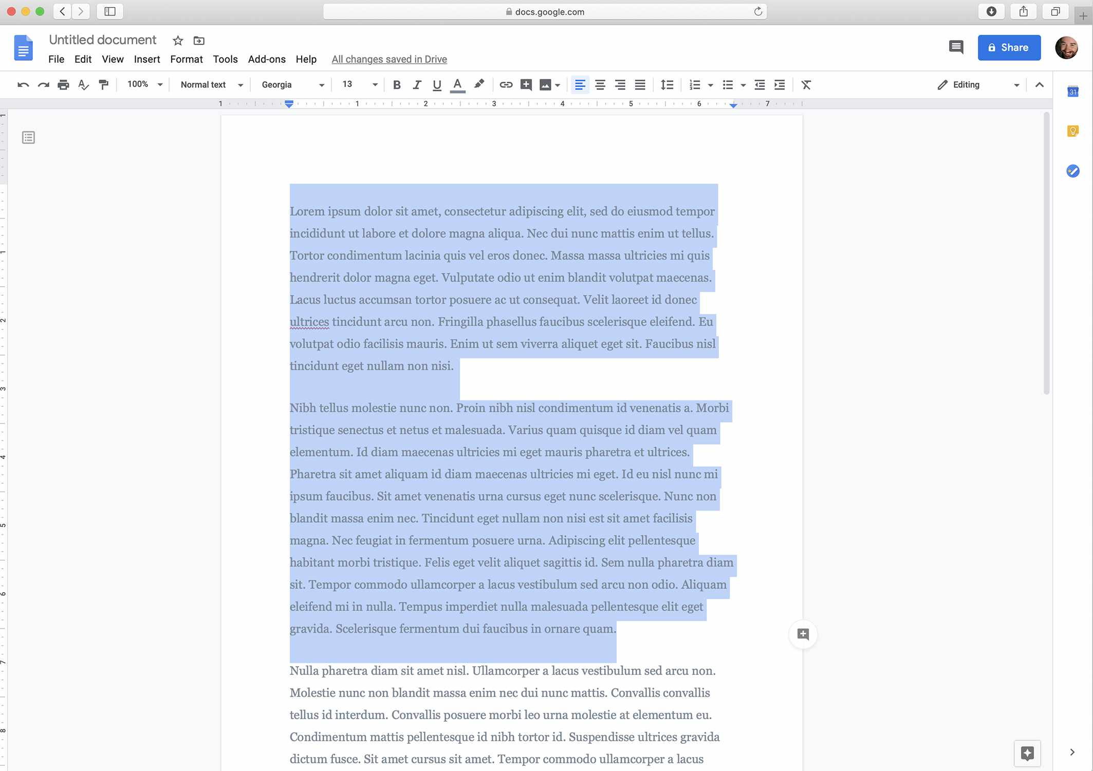 Google Docs screenshot with text highlighted