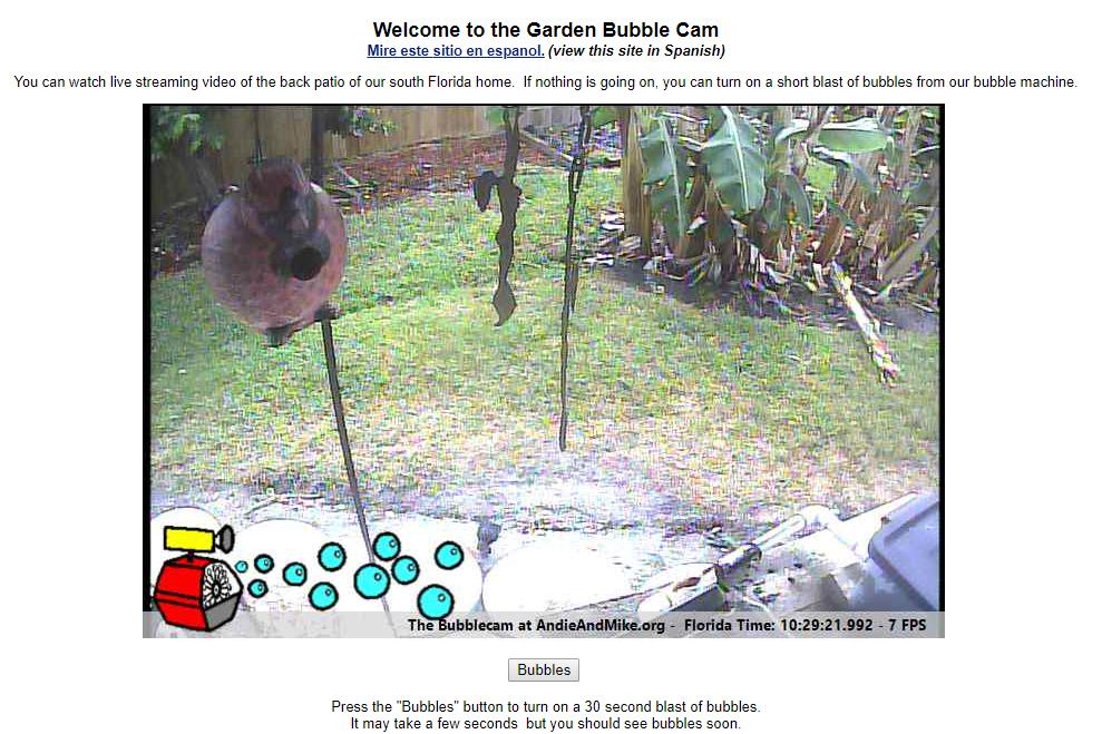 Garden Bubble Cam website