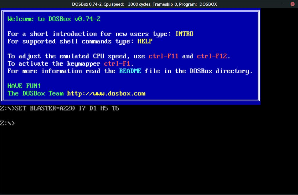 DOSBox terminal window