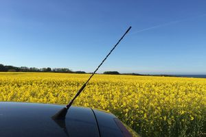 Car with antenna parked by flowering field against clear blue sky