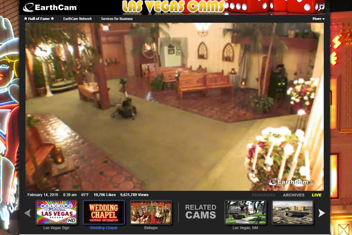 Viva Las Vegas Wedding Chapel Webcam