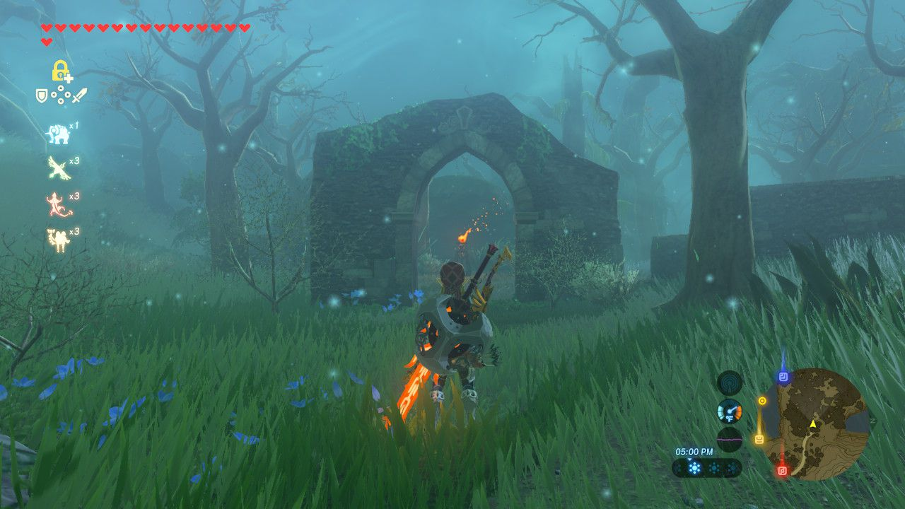 Entering the Lost Woods in The Legend of Zelda: Breath of the Wild