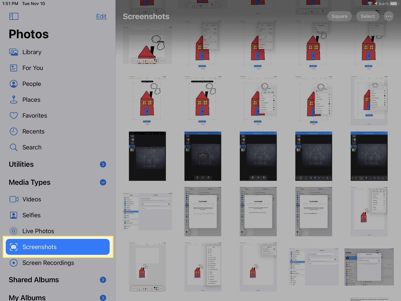 iPad Photos app, Screenshots.