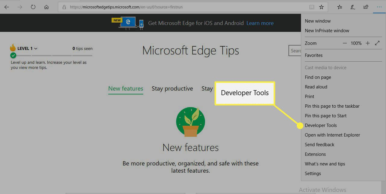 A screenshot of Microsoft Edge with the Developer Tools menu item highlighted