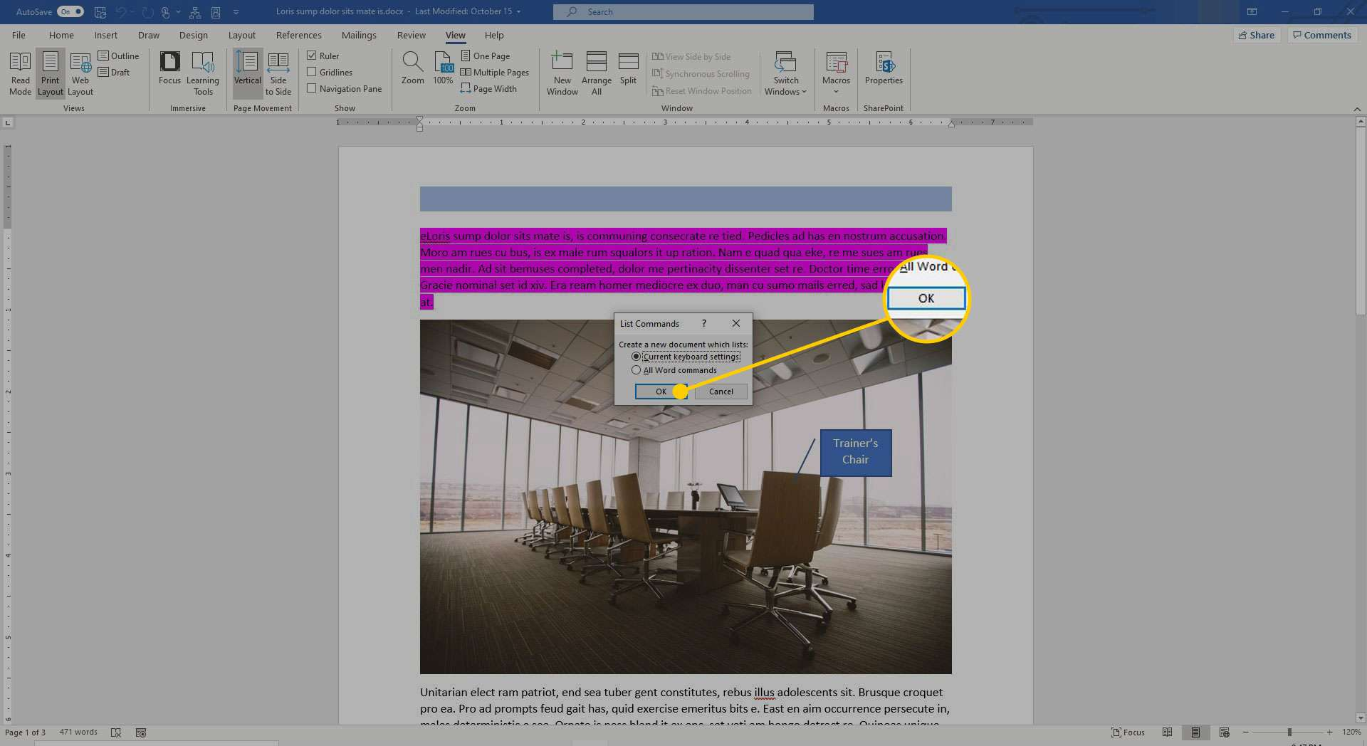 Macro commands in Word with the OK button highlighted