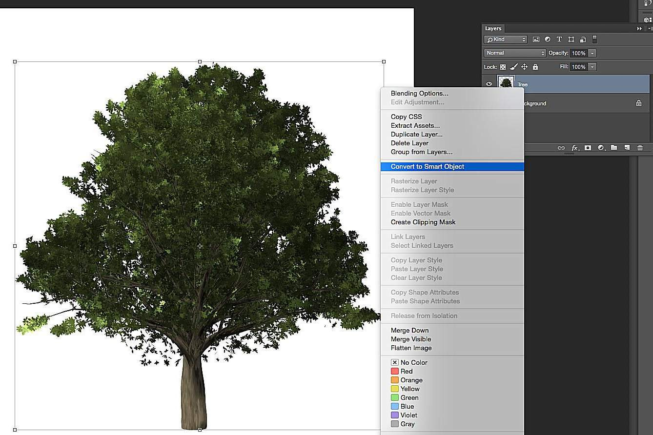 How To Make Trees In Photoshop