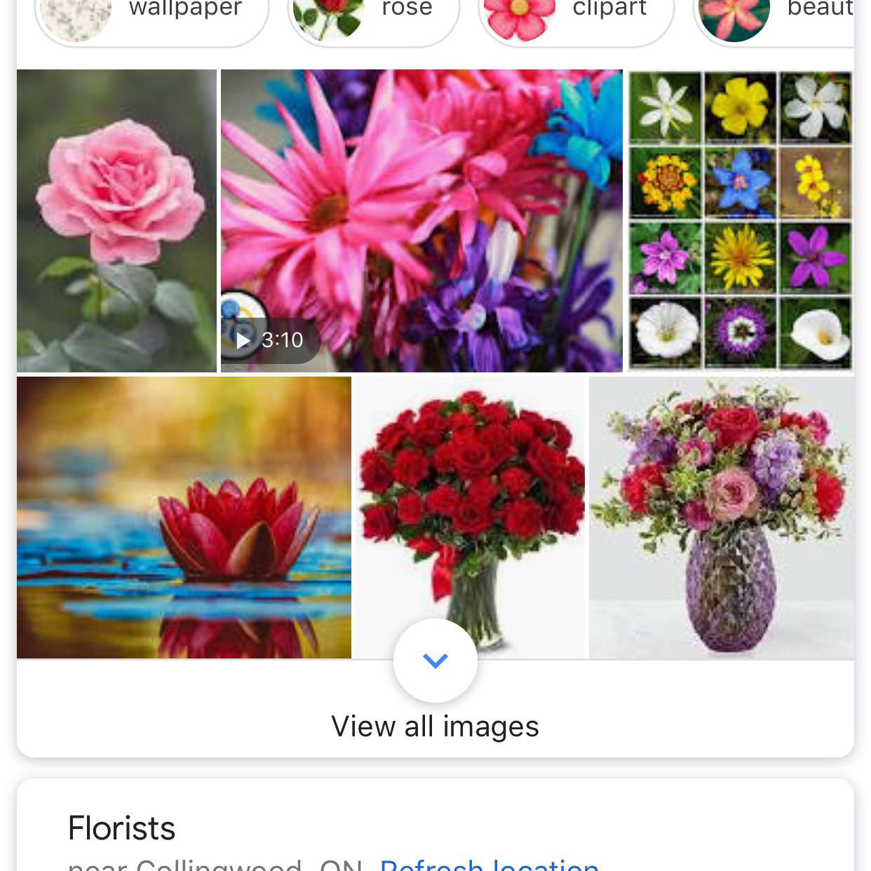 A screenshot of the Google app for iOS.