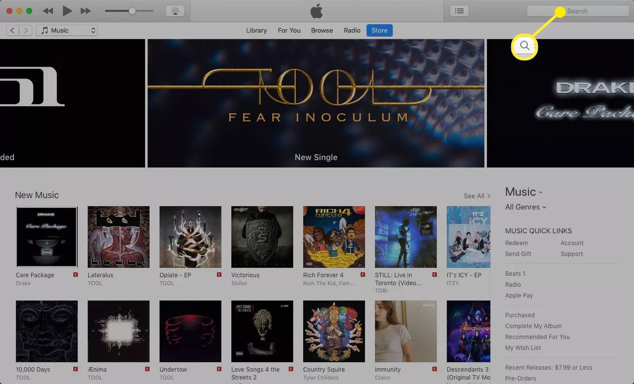The iTunes Music Store with the search box icon highlighted