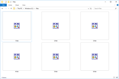 Screenshot of several FOB files in Windows 10