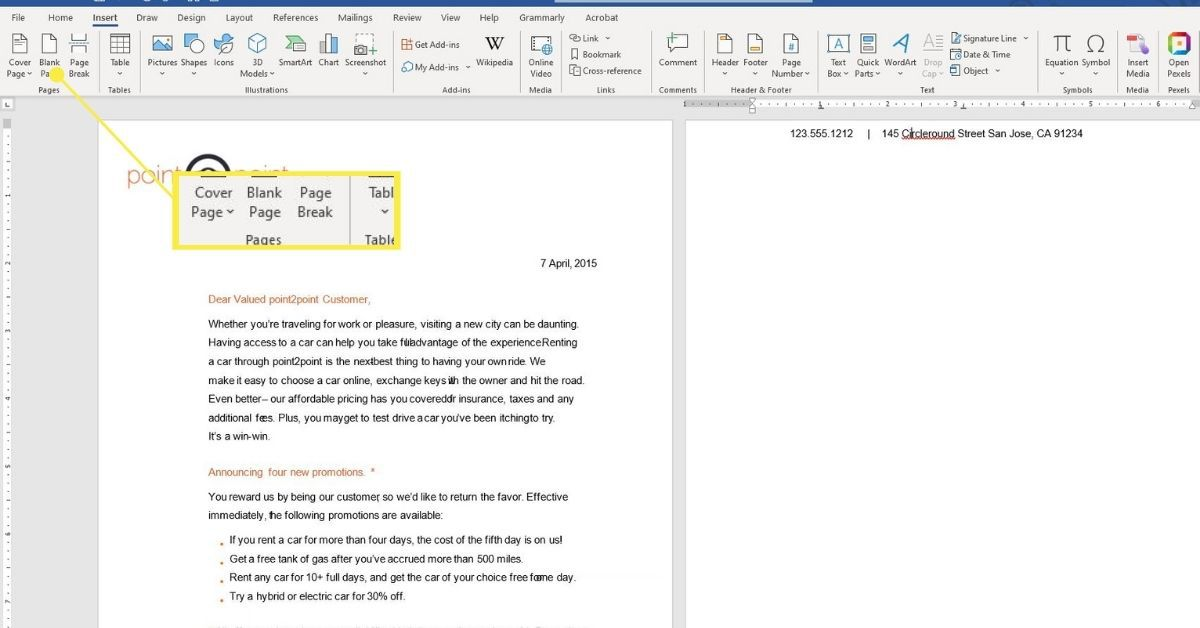 Blank Page on Insert tab in Word