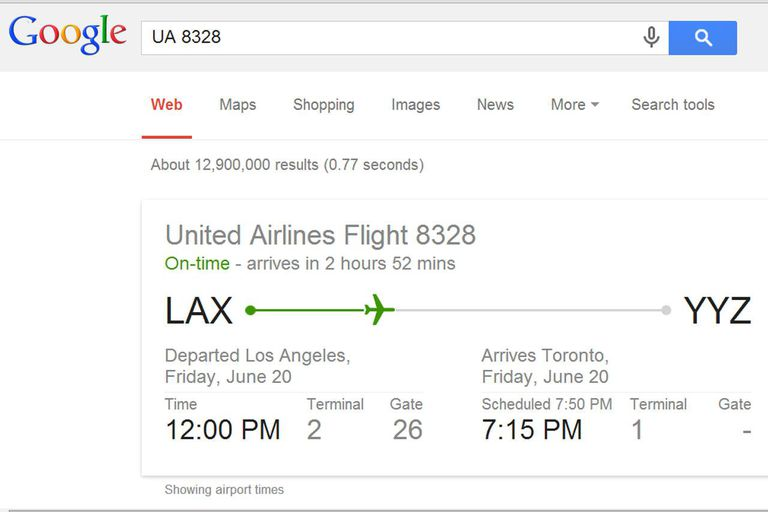 Google.com flight information search