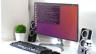 Unbuntu interface on computer screen