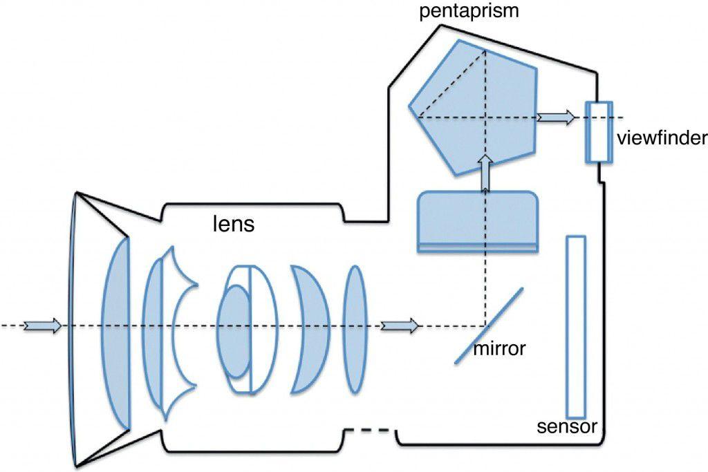 Diagram of how a DSLR camera works.