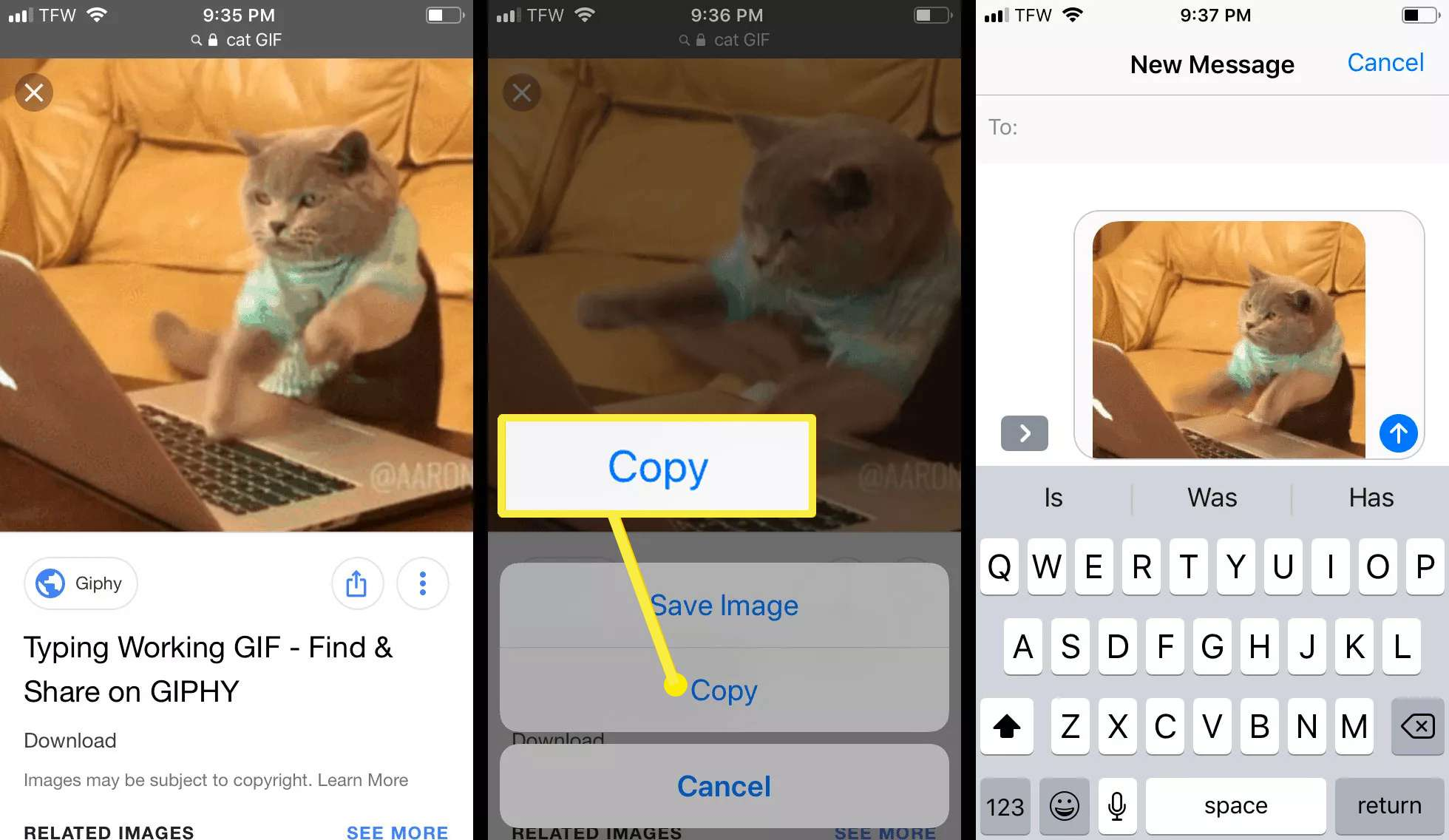 Saving a GIF from the internet to send on your iPhone