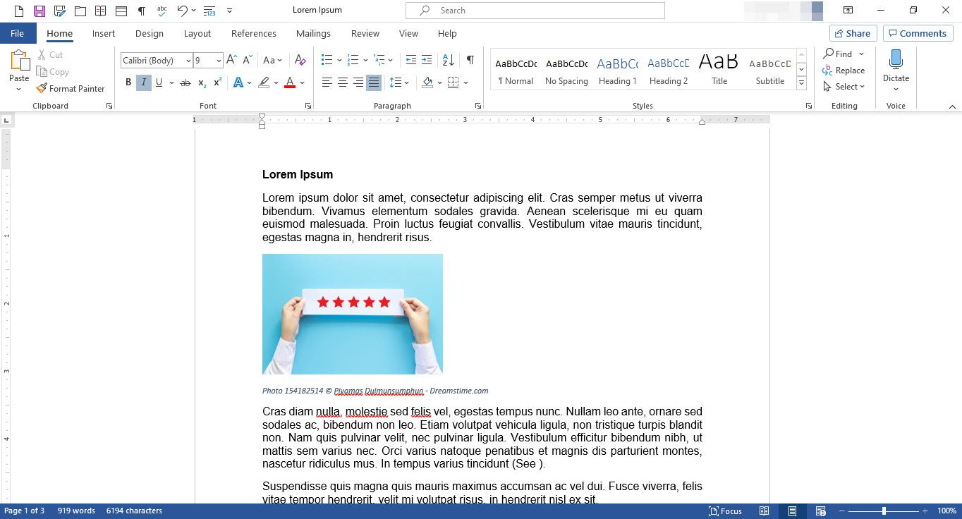 MS Word document with image and caption