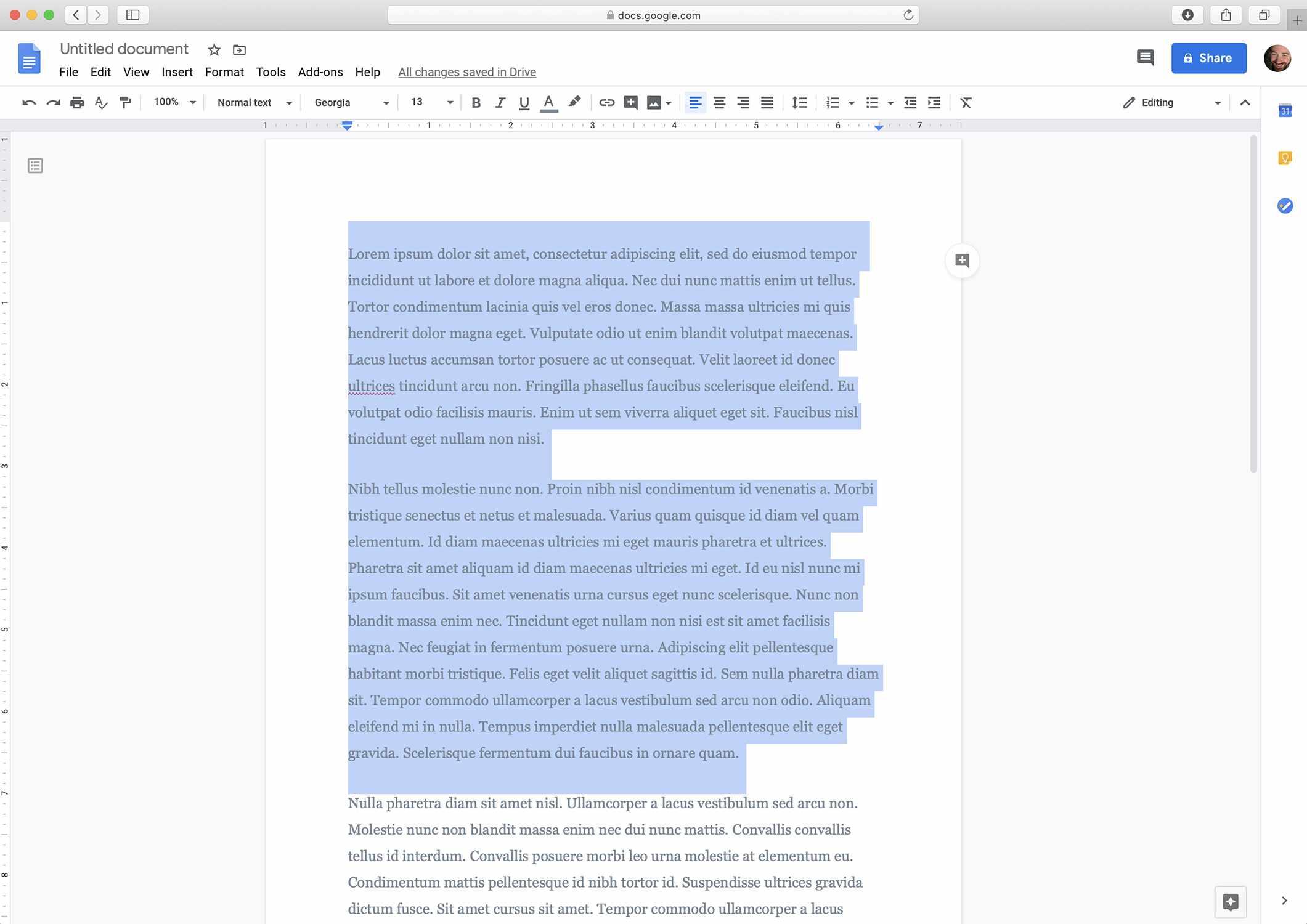 Google Docs screenshot with text selected