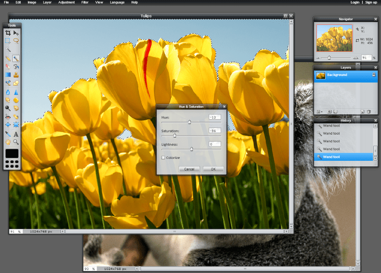 Screenshot of the online photo editor Pixlr