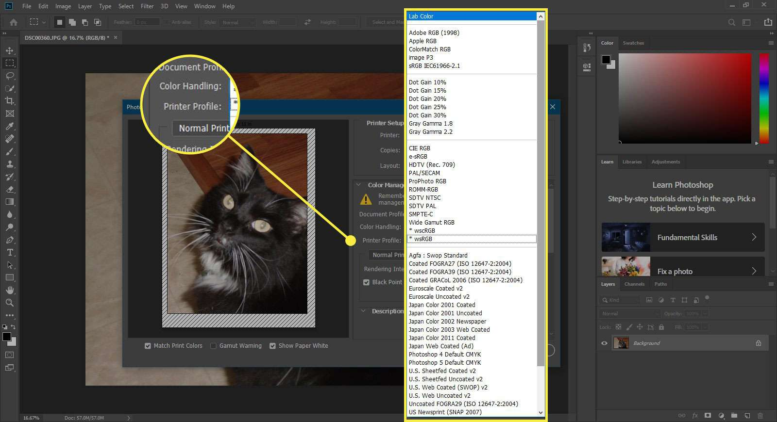 A screenshot of Photoshop's Print window with the Printer Profile options highlighted