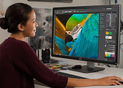 The Best 30-inch LCD Monitors of 2019