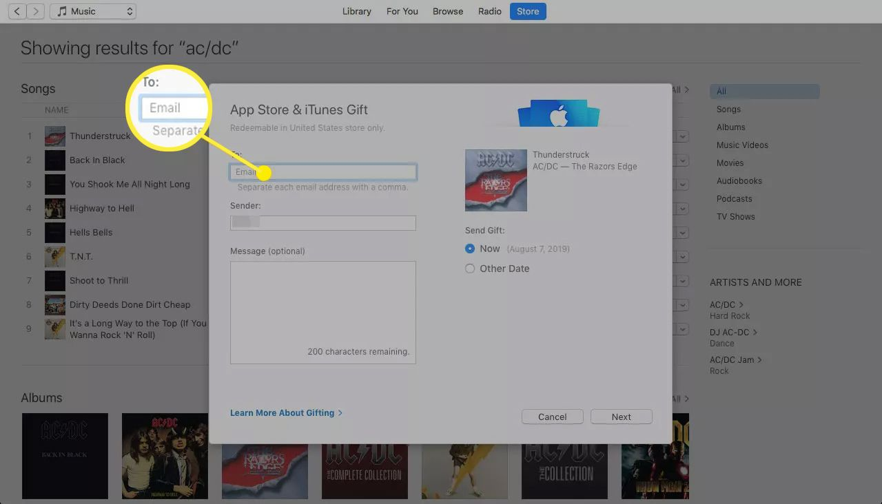 App Store & iTunes Gift screen with Email field highlighted