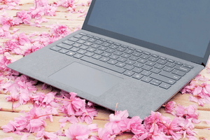 Surface Laptop 4 on a bed of flower petals