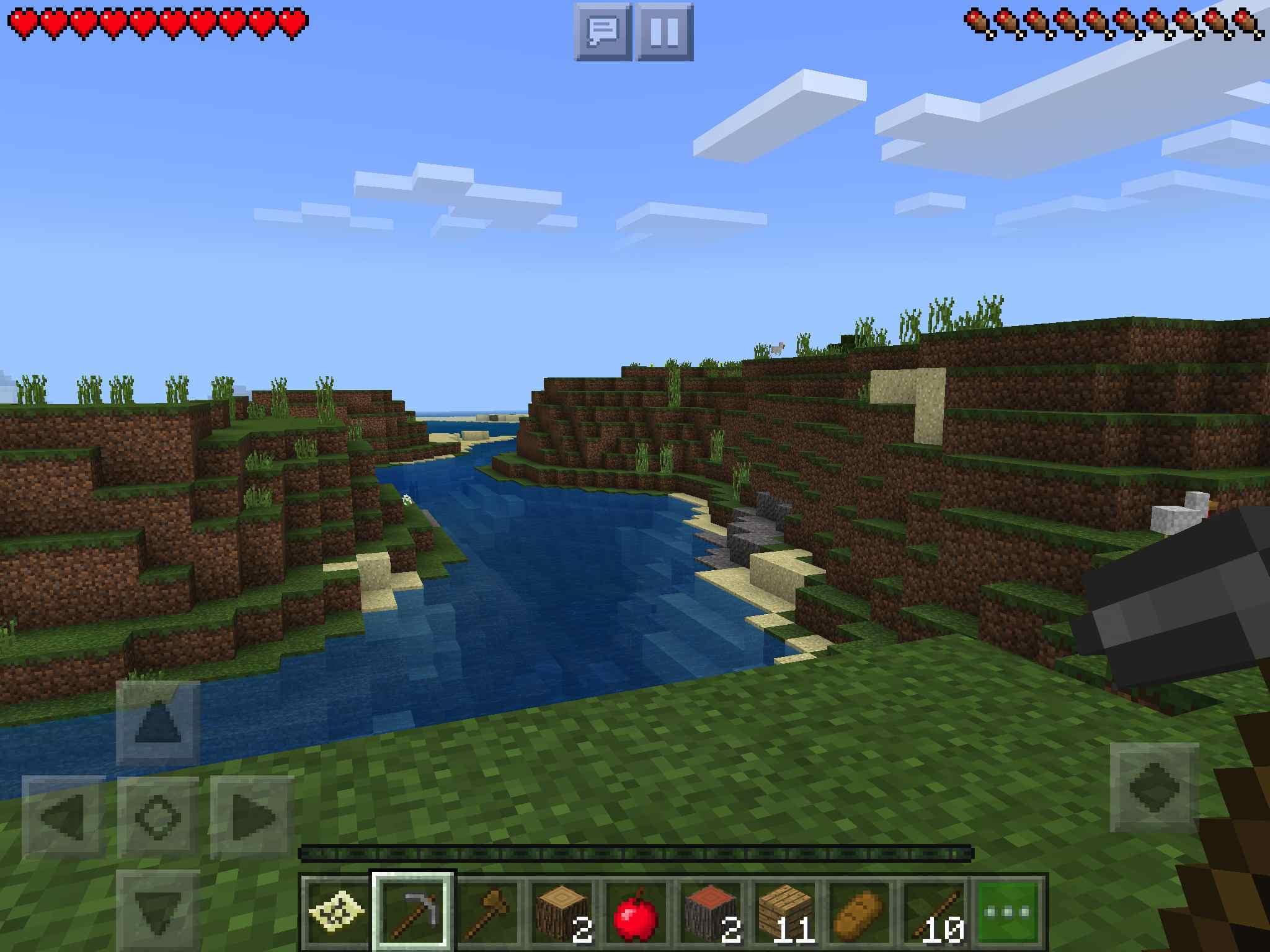Minecraft on iPad
