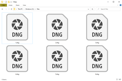 Several DNG files in Windows 10