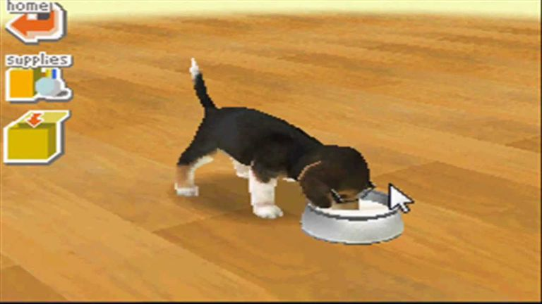 Dachshund puppy in Nintendogs: Dachshund & Friends