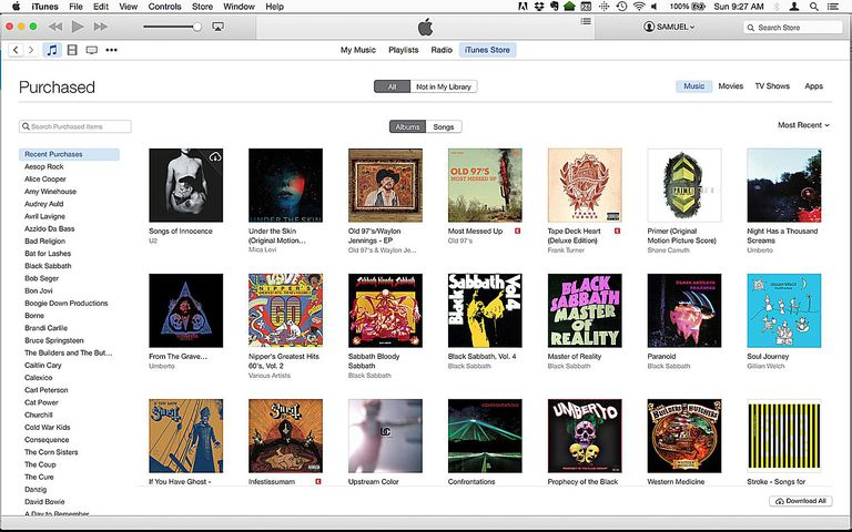 The iTunes main screen.