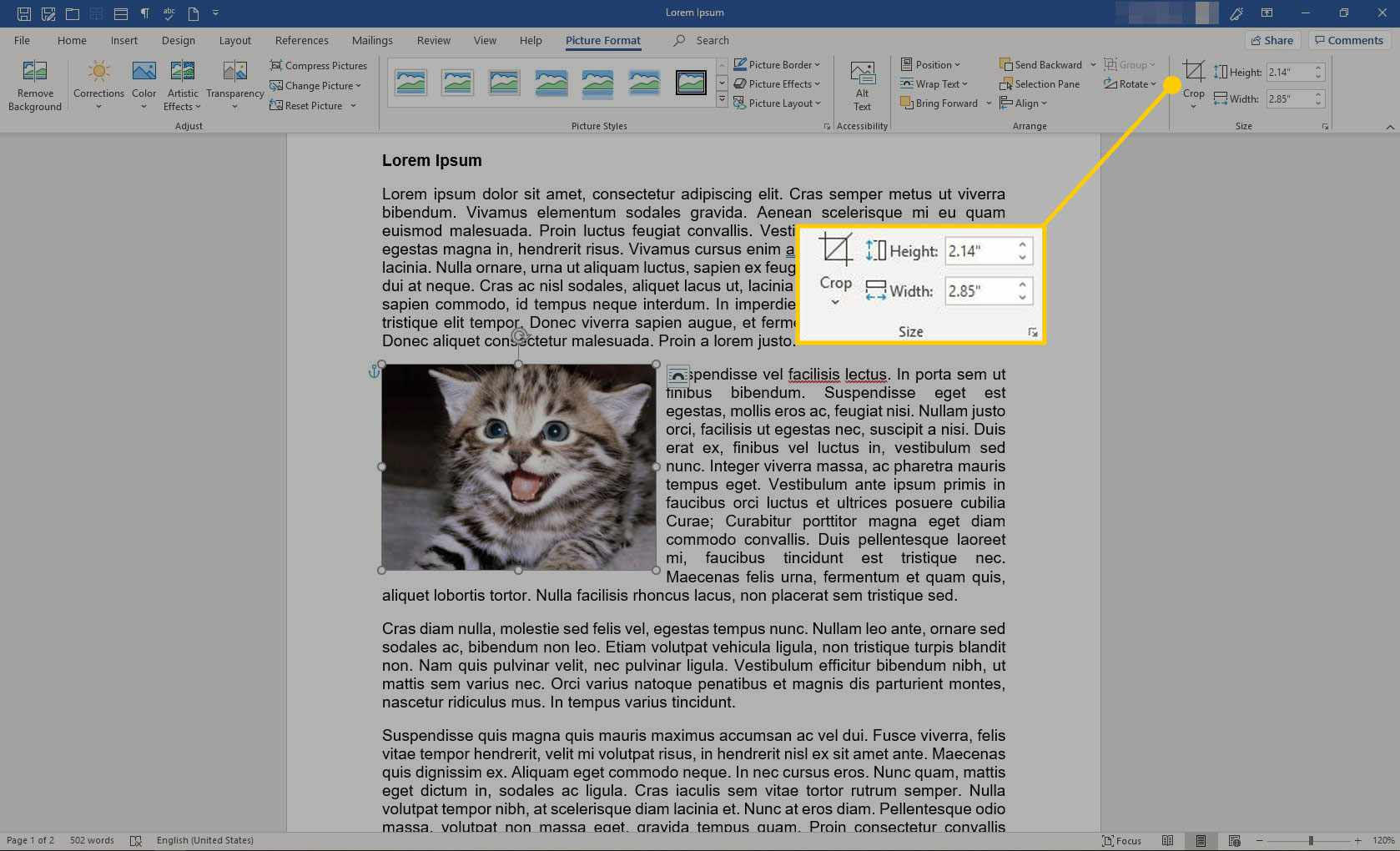 The Size section in Picture Format in Word