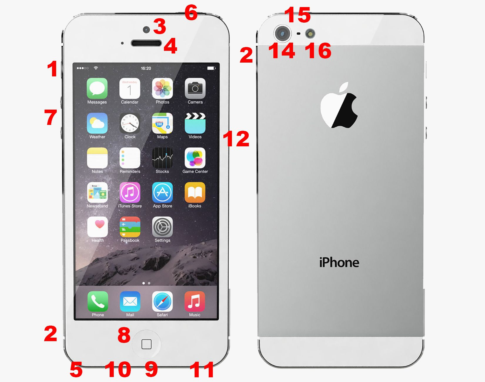 Anatomy of iphone