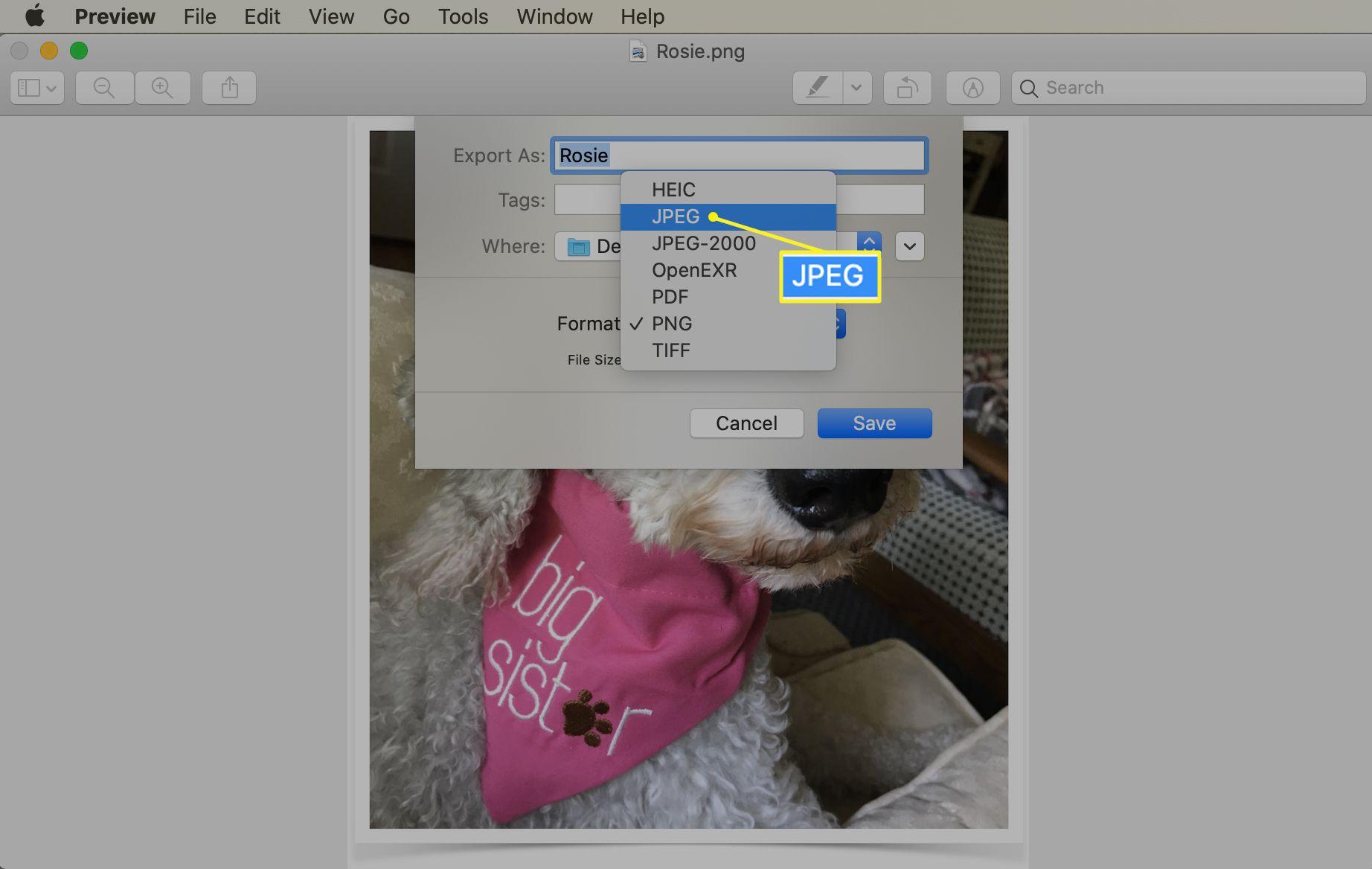 JPEG selected in the Preview Format menu