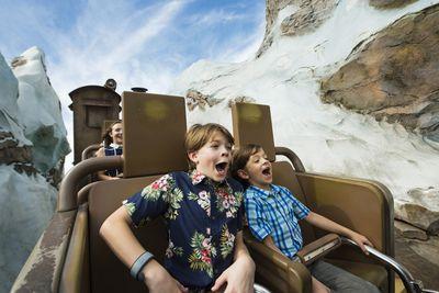 Two boys on a Disney ride