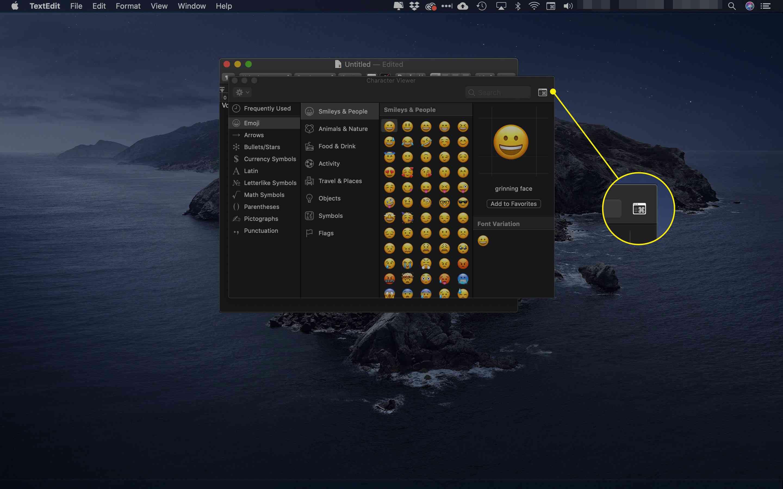 The Window icon in Emojis & Symbols