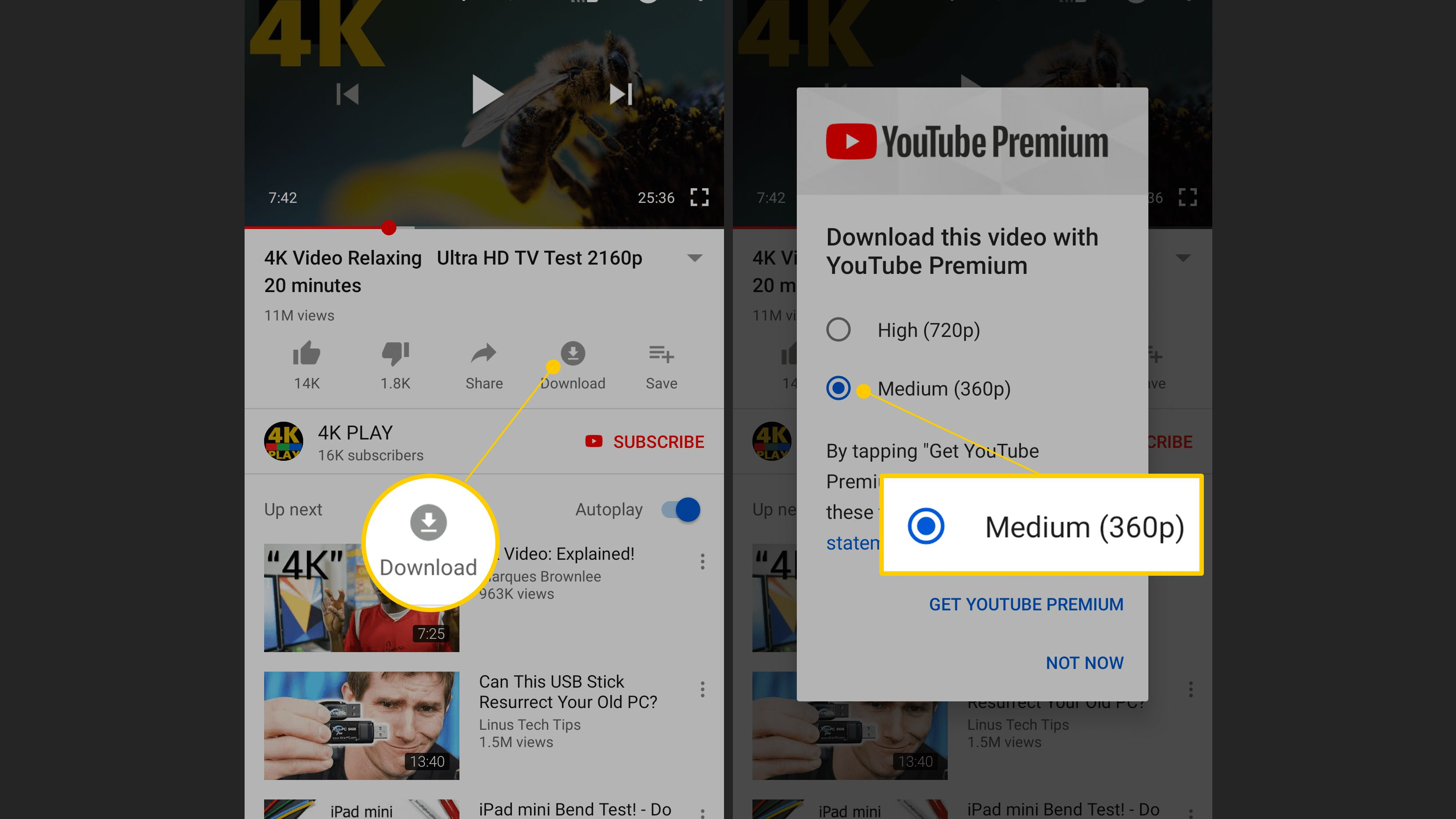 How To Download Youtube Videos On Your Android Device