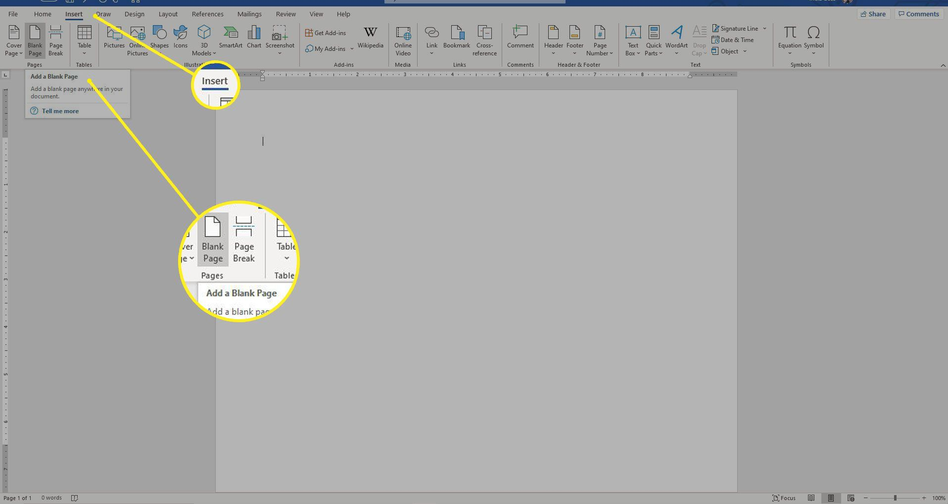 Word with the Insert and Blank Page sections highlighted