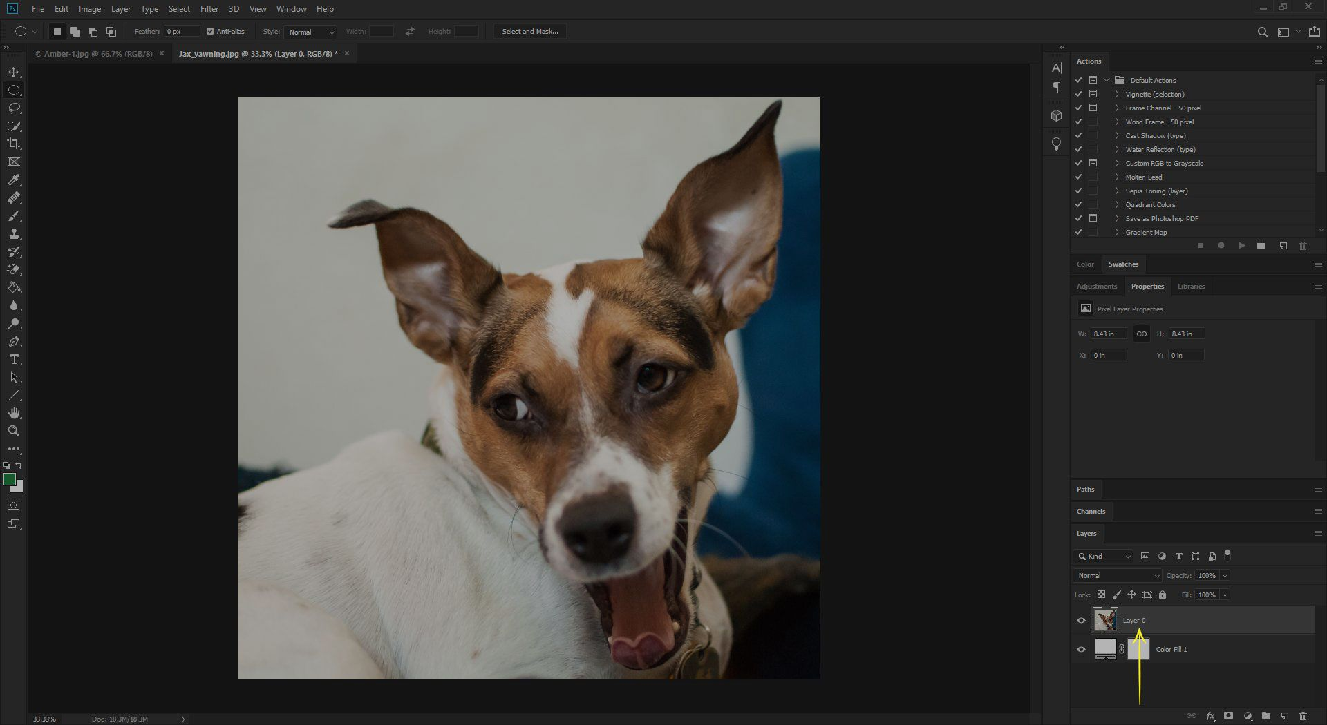 Drag the image layer to the top