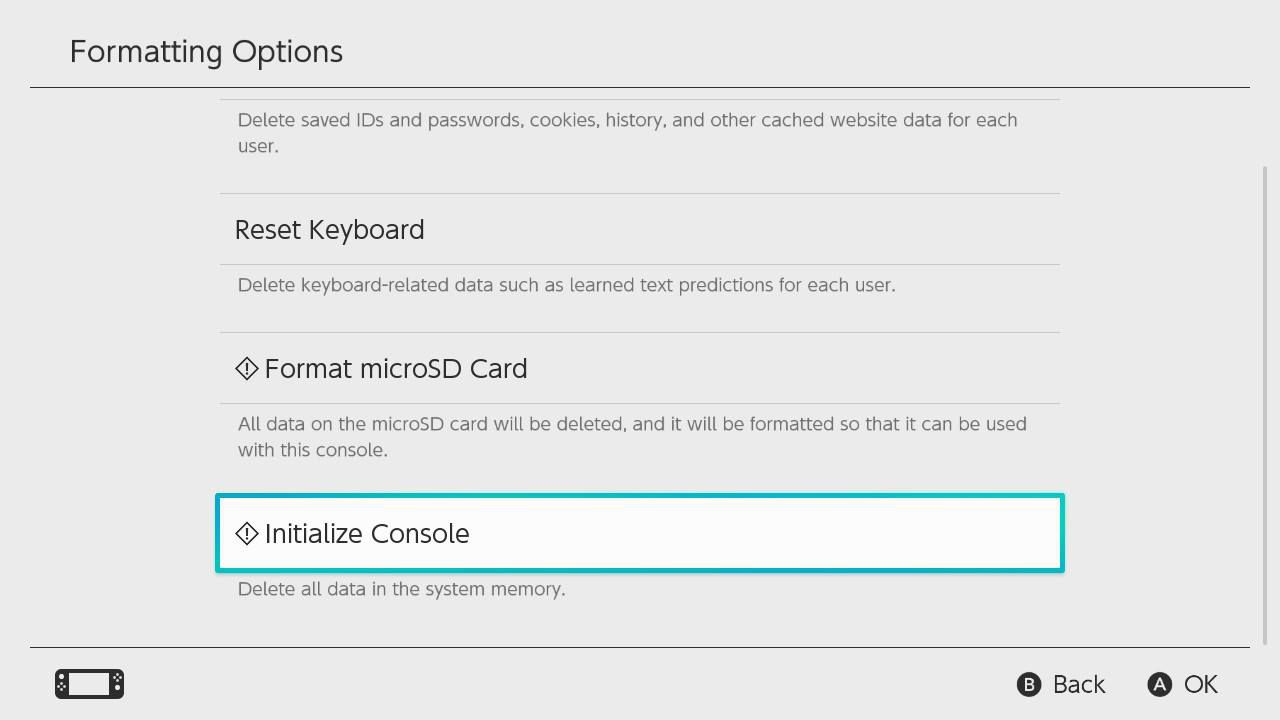 Intailize Console highlighted in the Nintendo Switch Formatting Options menu