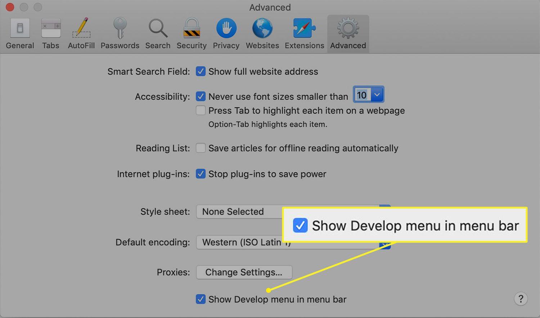 Advanced Safari preferences show Develop menu option