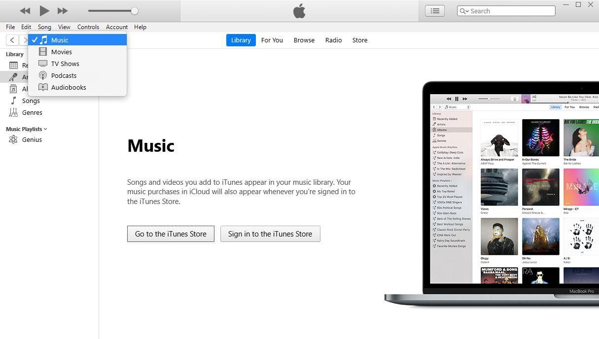 A screenshot of iTunes Music screen