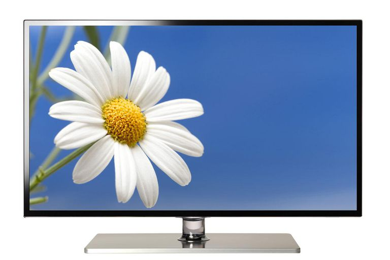 flat screen lcd television showing flower