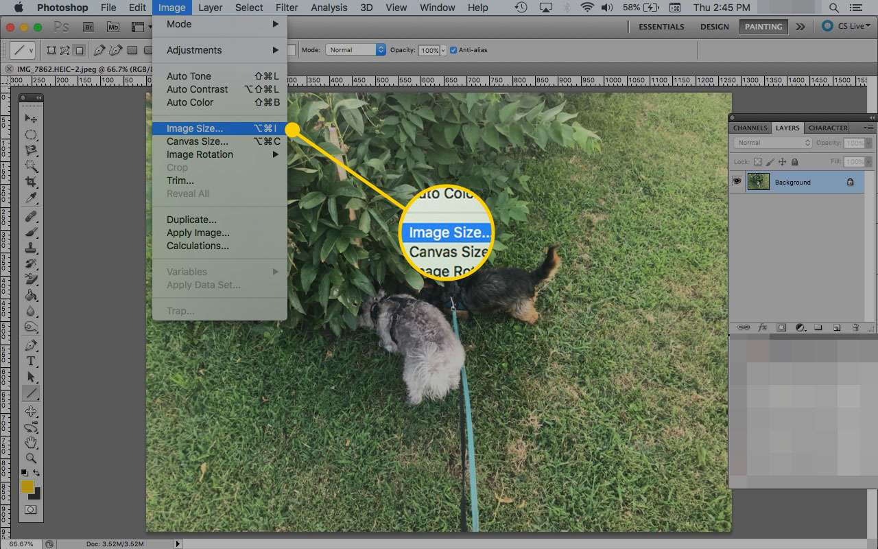An image open in Photoshop with the Image Size menu option highlighted