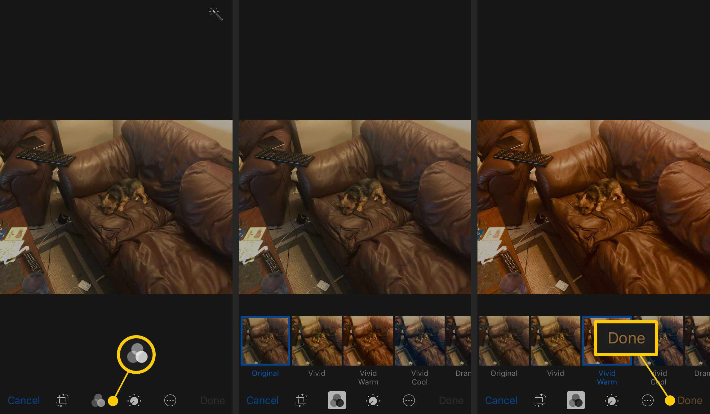 Applying a filter in Photos on iPhone
