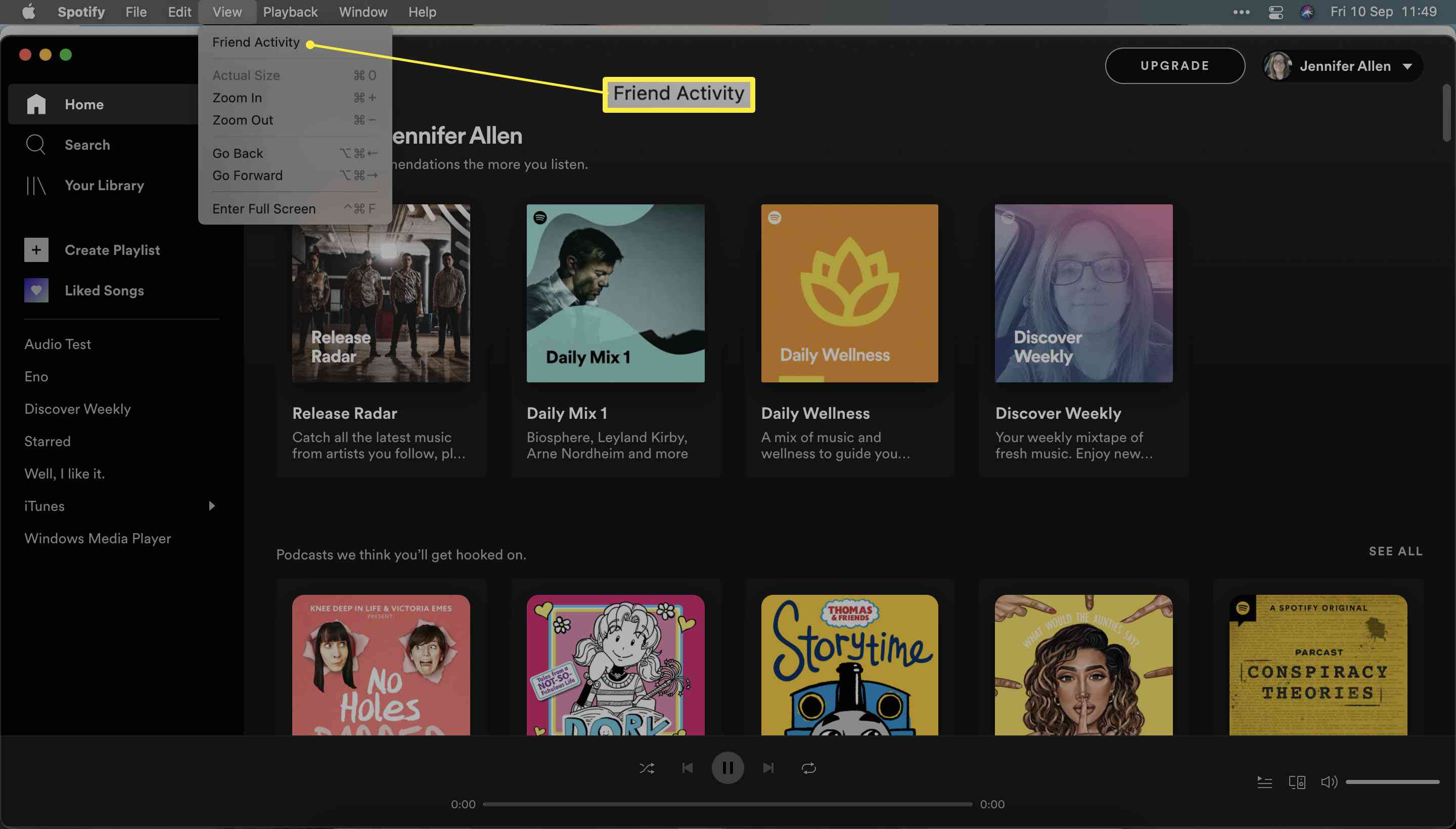 Spotify with View and Friend Activity highlighted